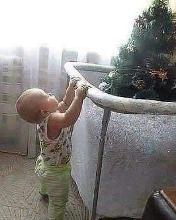 L'albero di Natale a prova bimbi piccoli ed animali domestici esiste! Dai un occhiata alle foto più divertenti